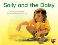 Image for PM RED SALLY & THE DAISY PM STORYBOOKS L