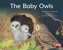 Image for PM RED THE BABY OWLS PM STORYBOOKS LEVEL