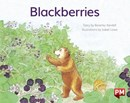 Image for PM YELLOW BLACKBERRIES PM STORYBOOKS LEV