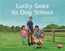 Image for PM YELLOW LUCKY GOES TO DOG SCHOOL PM ST