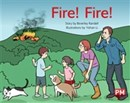 Image for PM YELLOW FIRE FIRE PM STORYBOOKS LEVEL