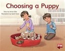 Image for PM YELLOW CHOOSING A PUPPY PM STORYBOOKS